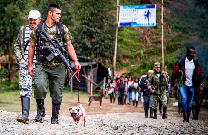Guerrillero del Cauca con su perro. Foto: Boris Guevara