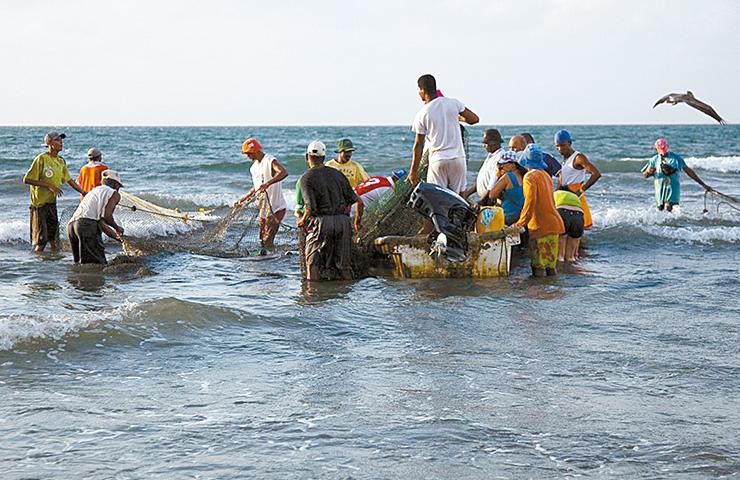 83efa0b31ec96 Pescadores del Caribe Colombiano. Foto tomada de   http   www.colombiataste.com 2018 05 27   la-pesca-sostenible-en-el-caribe-colombiano